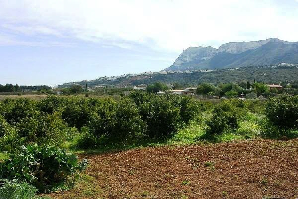 plot in Dénia