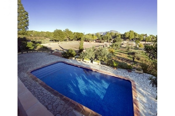 The spacious, paradise-like pool