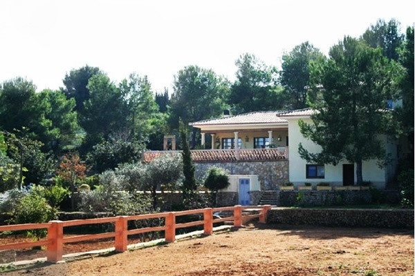 The imposing property with horse-paddocks and riding-grounds